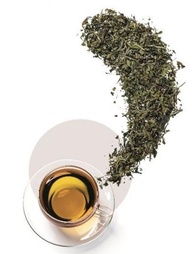 gruener-tee-teesortiment-mount-everest-tea-company